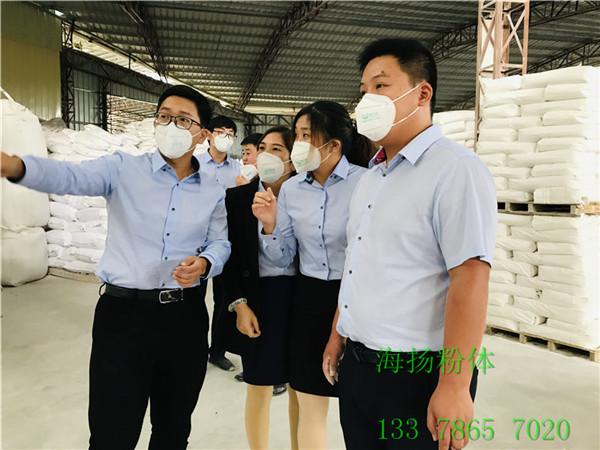 涂料硫酸钡产品
