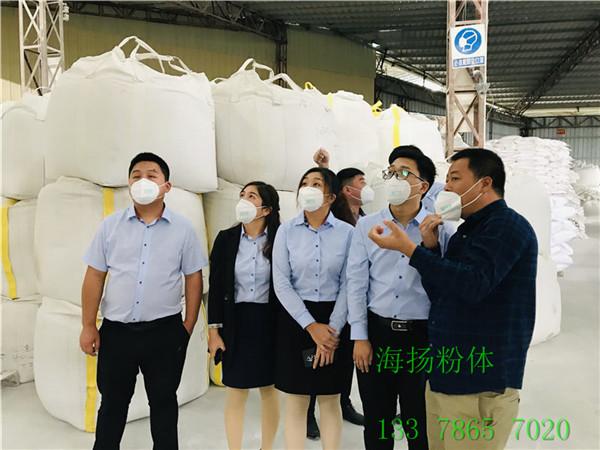 海扬HY-801高岭土